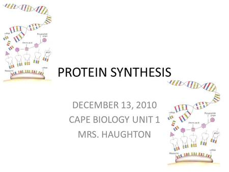 PROTEIN SYNTHESIS DECEMBER 13, 2010 CAPE BIOLOGY UNIT 1 MRS. HAUGHTON.