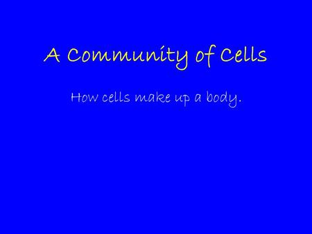 A Community of Cells How cells make up a body.. Cell Organization Cells are organized into systems that, together, perform functions that keep the organs.