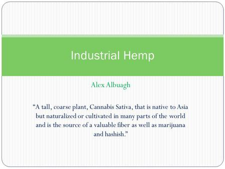 "Alex Albuagh Industrial Hemp ""A tall, coarse plant, Cannabis Sativa, that is native to Asia but naturalized or cultivated in many parts of the world and."