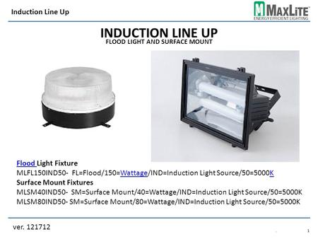 ENERGY EFFICIENT LIGHTING INDUCTION LINE UP FLOOD LIGHT AND SURFACE MOUNT Flood Flood Light Fixture MLFL150IND50- FL=Flood/150=Wattage/IND=Induction Light.