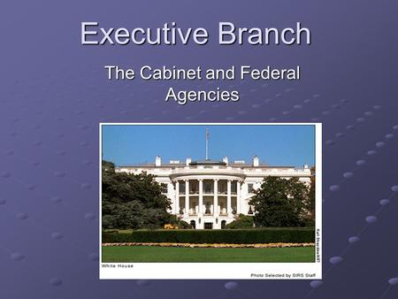 Executive Branch The Cabinet and Federal Agencies.
