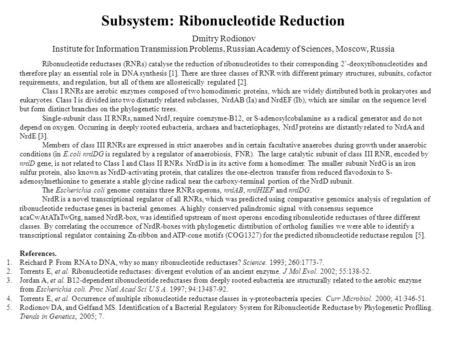 Ribonucleotide reductases (RNRs) catalyse the reduction of ribonucleotides to their corresponding 2`-deoxyribonucleotides and therefore play an essential.