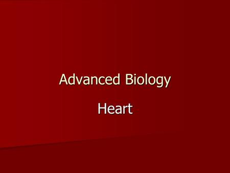 Advanced Biology Heart. Size, Shape, Location Fist Fist Hollow, cone shaped Hollow, cone shaped Mediastinum, Rests on diaphragm, posterior to sternum,