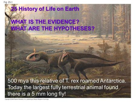 25 History of Life on Earth WHAT IS THE EVIDENCE?