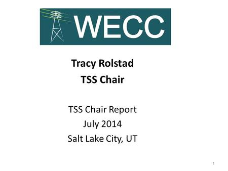 Tracy Rolstad TSS Chair TSS Chair Report July 2014 Salt Lake City, UT 1.