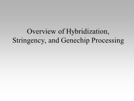 Overview of Hybridization, Stringency, and Genechip Processing.
