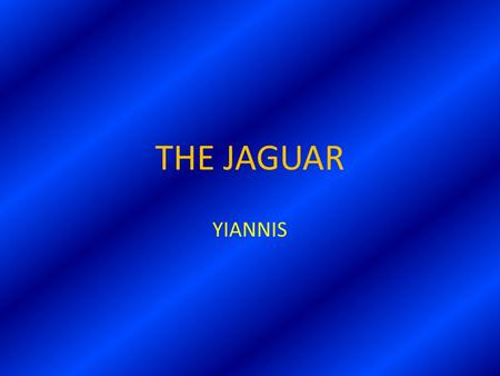 THE JAGUAR YIANNIS CONTENTS  A FEW WORDS ABOUT THE JAGUAR  PICTURES  QUIZ  YOUR MARK IN THE QUIZ.