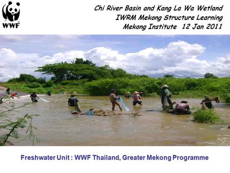 Chi River Basin and Kang La Wa Wetland IWRM Mekong Structure Learning Mekong Institute 12 Jan 2011 Freshwater Unit : WWF Thailand, Greater Mekong Programme.