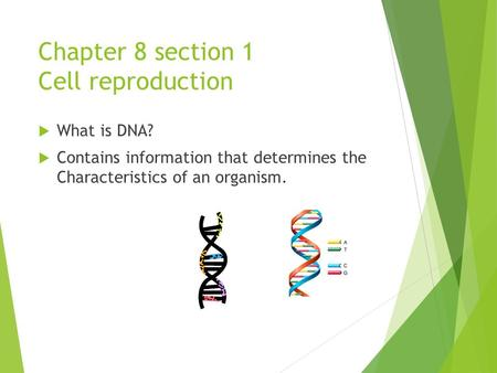 Chapter 8 section 1 Cell reproduction  What is DNA?  Contains information that determines the Characteristics of an organism.