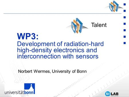 Norbert Wermes, University of Bonn WP3: Development of radiation-hard high-density electronics and interconnection with sensors Talent.