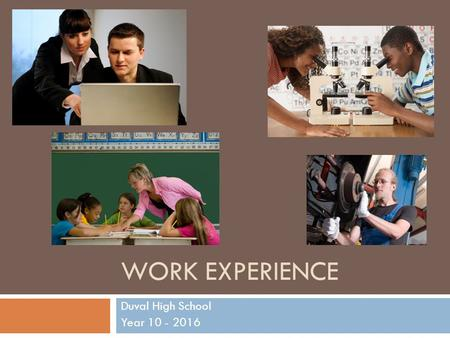 WORK EXPERIENCE Duval High School Year 10 - 2016.