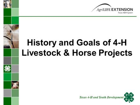 History and Goals of 4-H Livestock & Horse Projects Texas 4-H and Youth Development.