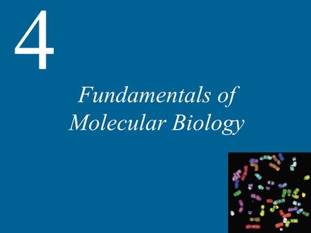 Fundamentals of Molecular Biology 4. 4 Fundamentals of Molecular Biology Heredity, Genes, and DNA Expression of Genetic Information Recombinant DNA Detection.