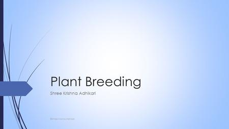 Plant Breeding Shree Krishna Adhikari ©Shree Krishna Adhikari.