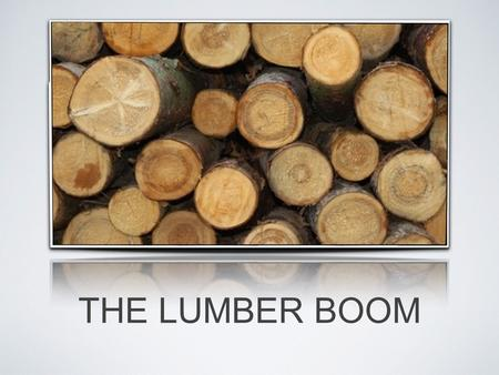 THE LUMBER BOOM. MILLS ARE OPEN FOR BUSINESS! Plum Creek Timber Mill was reopened in march after being shut down for 4 years Its local pay role is $1.5.