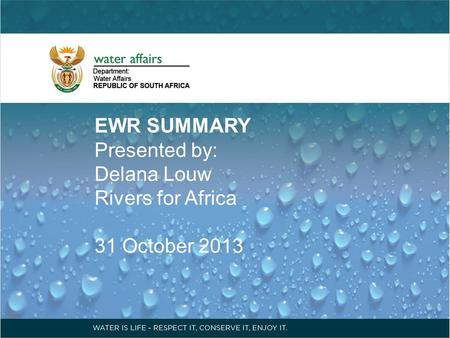 EWR SUMMARY Presented by: Delana Louw Rivers for Africa 31 October 2013.