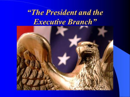 """The President and the Executive Branch"". The President's Job."