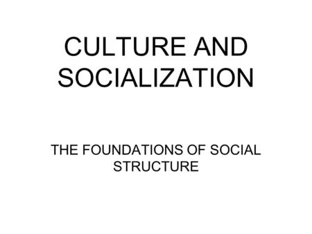 CULTURE AND SOCIALIZATION THE FOUNDATIONS OF SOCIAL STRUCTURE.