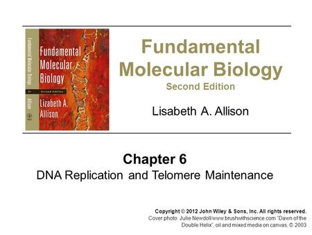 Fundamental Molecular Biology Second Edition Chapter 6 DNA Replication and Telomere Maintenance Lisabeth A. Allison Copyright © 2012 John Wiley & Sons,