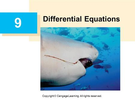 Copyright © Cengage Learning. All rights reserved. 9 Differential Equations.