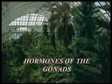HORMONES OF THE GONADS. The gonads are bifunctional organs that produce germ cells and the sex hormones. The ovaries produce ova and the steroid hormones.