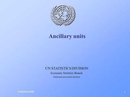Ancillary units UNSD/NA/MR1 UN STATISTICS DIVISION Economic Statistics Branch National Accounts Section.