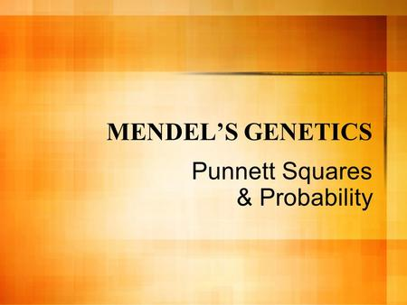 MENDEL'S GENETICS Punnett Squares & Probability. Before we begin, let's get a few terms straight… Phenotype: The PHysical APPEARANCE of an inherited trait.