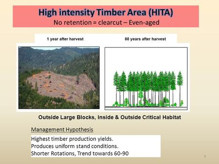 Outside Large Blocks, Inside & Outside Critical Habitat Management Hypothesis Highest timber production yields. Produces uniform stand conditions. Shorter.