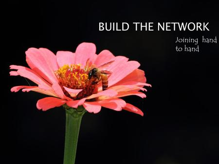 BUILD THE NETWORK Joining hand to hand.  Connectivity  Electricity  Language  Skills.