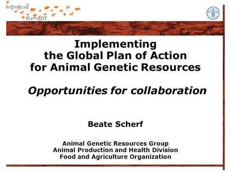 Implementing the Global Plan of Action for Animal Genetic Resources Opportunities for collaboration Beate Scherf Animal Genetic Resources Group Animal.