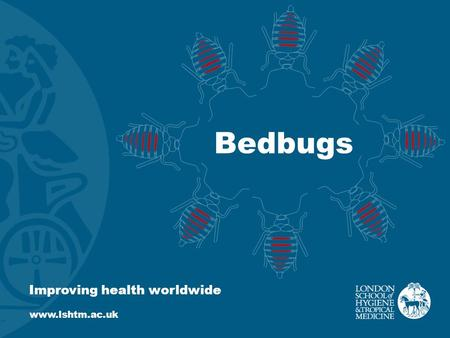Bedbugs Improving health worldwide www.lshtm.ac.uk.