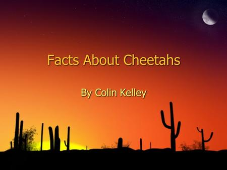Facts About Cheetahs By Colin Kelley. In this research paper you will be learning about cheetahs. First you are going to learn about what it looks like,