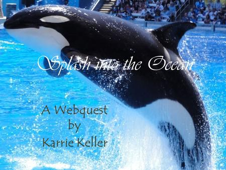 Splash into the Ocean A Webquest by Karrie Keller.