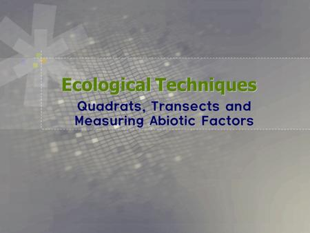 Ecological Techniques Quadrats, Transects and Measuring Abiotic Factors.