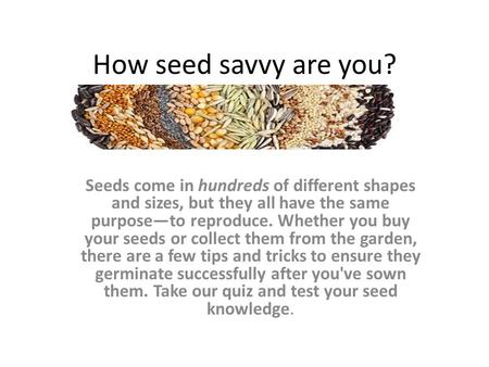 How seed savvy are you? Seeds come in hundreds of different shapes and sizes, but they all have the same purpose—to reproduce. Whether you buy your seeds.