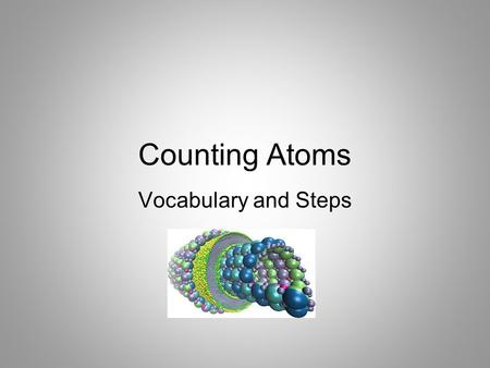 Counting Atoms Vocabulary and Steps.
