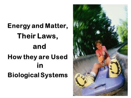 Energy and Matter, Their Laws, and How they are Used in Biological Systems.