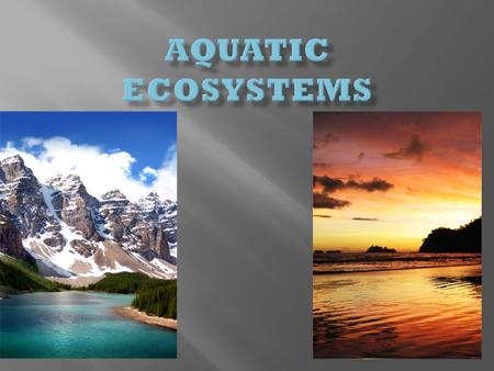 -Aquifers -Springs -Ponds -Lakes -Creeks/Streams -Rivers -Wetlands Makes up < 3 % of water on earth.