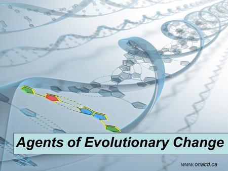 Agents of Evolutionary Change www.onacd.ca. Mutation What is a mutation? Changes to the nucleotide sequence in the genetic material of an organism that.