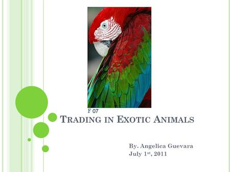 T RADING IN E XOTIC A NIMALS By. Angelica Guevara July 1 st, 2011.