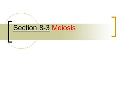 Section 8-3 Meiosis. Obj 9: List and describe the phases of meiosis Meiosis I: Preceded by copying of DNA in interphase.