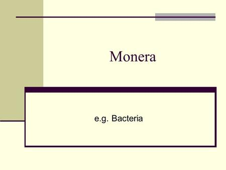 E.g. Bacteria Monera. Learning Objectives Name 3 types of bacterial cell Explain reproduction of bacteria Explain nutrition of bacteria State the factors.