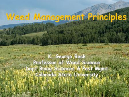 Weed Management Principles K. George Beck Professor of Weed Science Dept Bioag Sciences & Pest Mgmt Colorado State University.