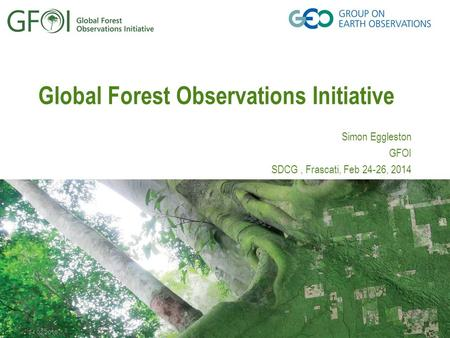 24.02.2016 Global Forest Observations Initiative Simon Eggleston GFOI SDCG, Frascati, Feb 24-26, 2014.