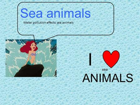Sea animals Water pollution affects sea animals I ANIMALS sea.