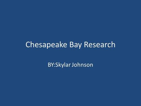 Chesapeake Bay Research BY:Skylar Johnson. Why is it important to have a variety of animals In the bay? It is important to have a variety of living things.