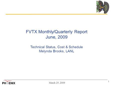 March 25, 2009 1 FVTX Monthly/Quarterly Report June, 2009 Technical Status, Cost & Schedule Melynda Brooks, LANL.