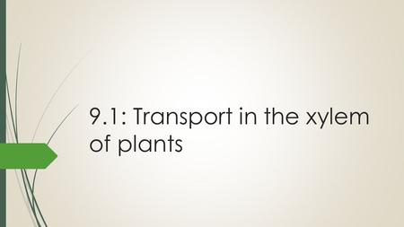 9.1: Transport in the xylem of plants. Transpiration The loss of water vapour from leaves and other aerial parts of the plant. 90% of water absorbed by.
