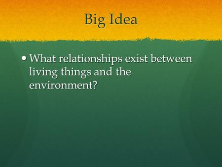 Big Idea What relationships exist between living things and the environment? What relationships exist between living things and the environment?