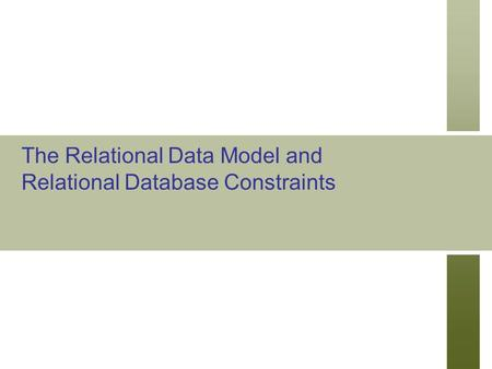 The Relational Data Model and Relational Database Constraints.